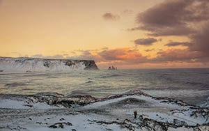 Lavanadeln am Kap Dyrhólaey