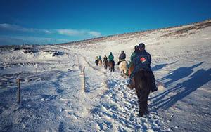Hotel Eldhestar - Wir reiten auf Islandpferde durch die atemberaubende isländischen Natur