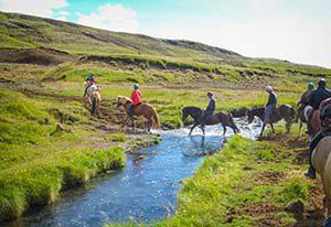 Ausritt auf Islandpferden