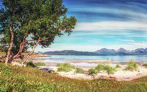 Wunderschöner Strand jenseits des Polarkreis