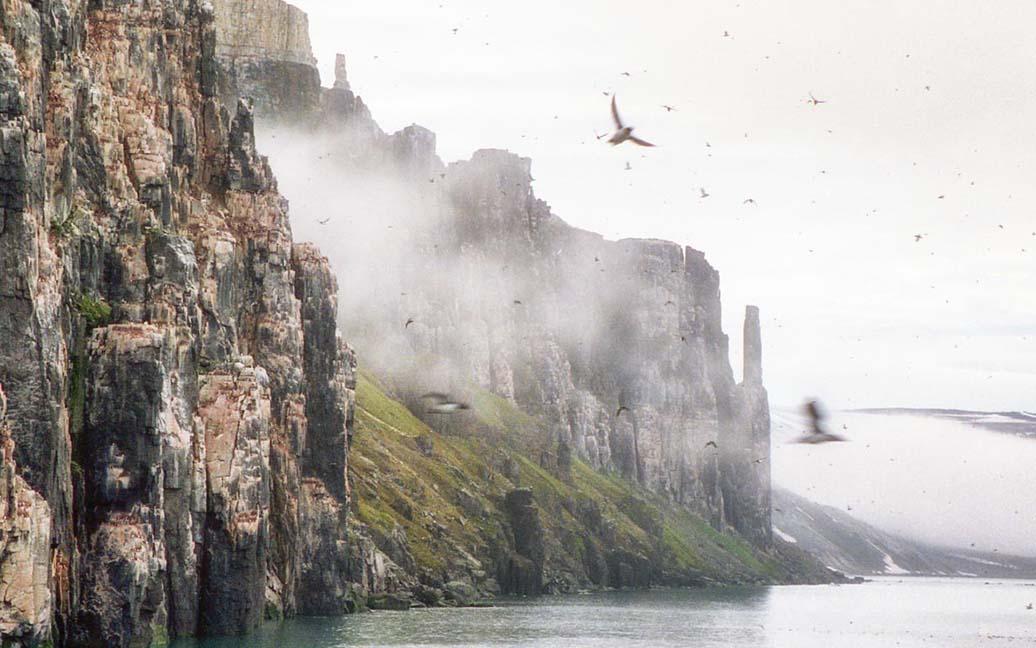 Im Lomfjord - Alkefjellet