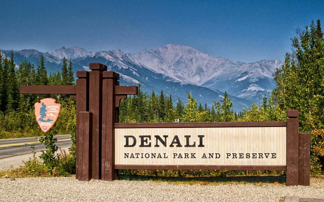 Alaska Huskies im Denali National Park
