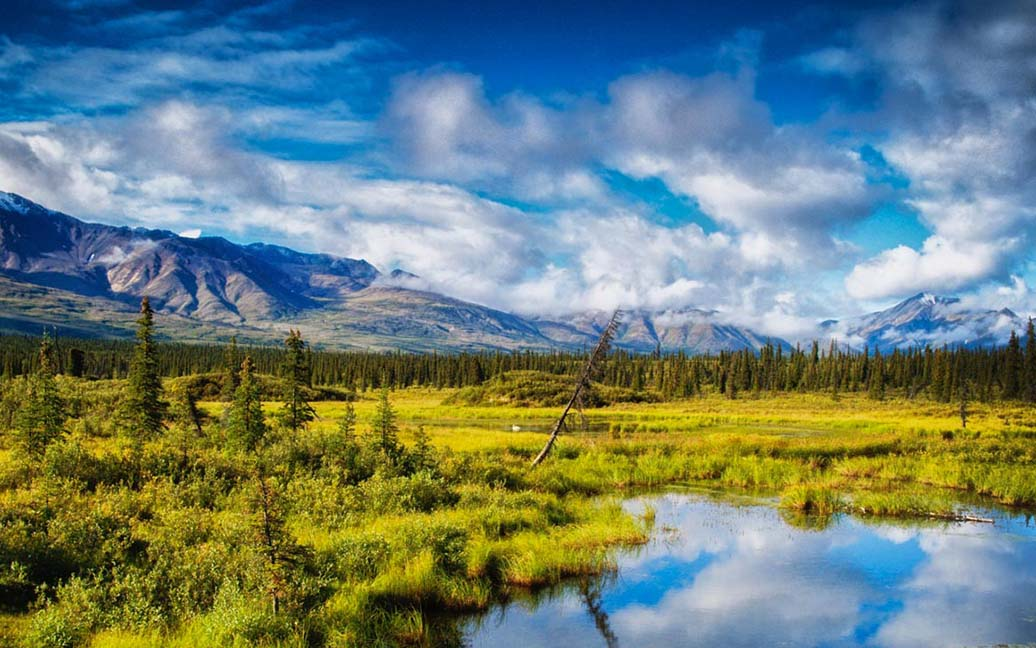 Denali Highway – Fahrt via Cantwell zum Tangle Lake
