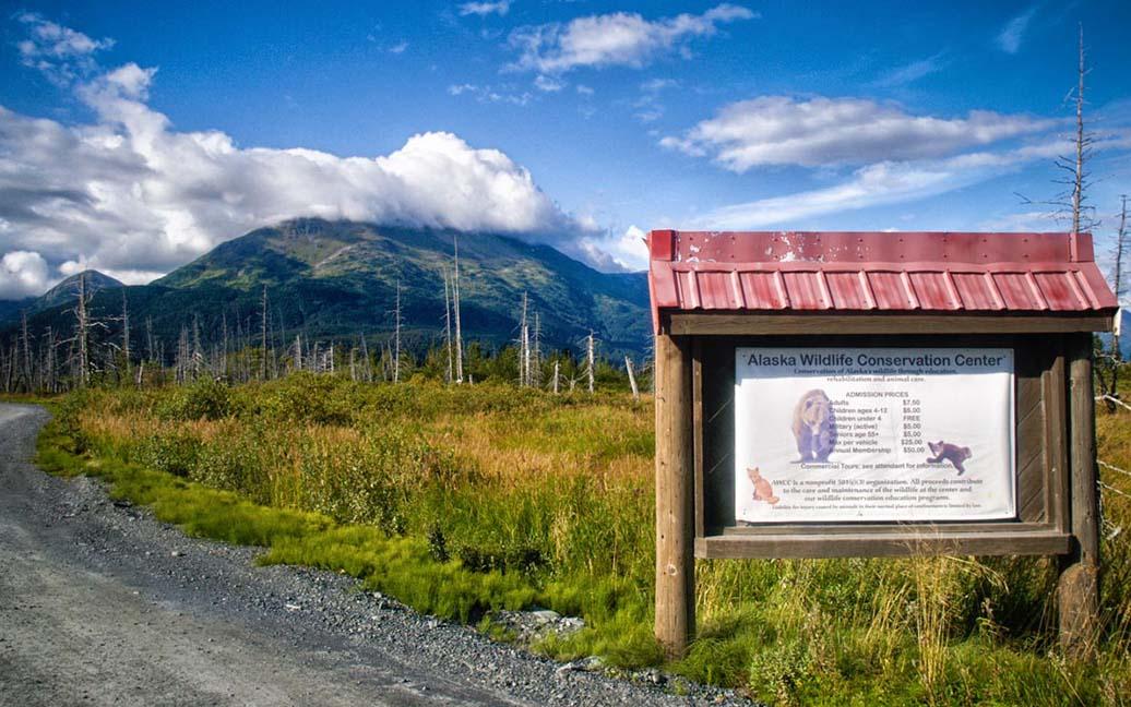 Wildtiere im Alaska Wildlife Conservation Center - AWCC
