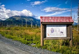 Alaska-Wildlife-Conservation-Center