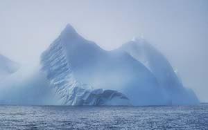 Eisberge im Ammassalik Fjord