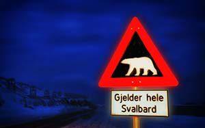 Das einzig wahre Eisbärwarnschild steht in Longyearbyen – ein Verkehrsschild mit einem weißen Bären auf schwarzem Grund :-)